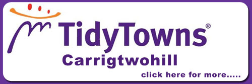 Tidy Towns Carrigtwohill